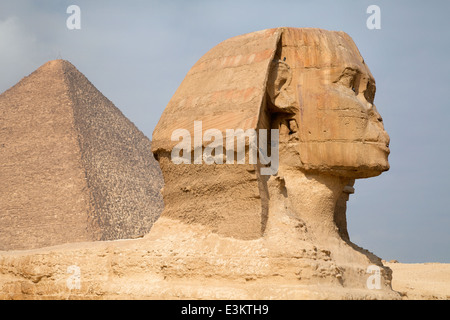 Closeup view of the Sphinx head, Cairo, Egypt - Stock Photo