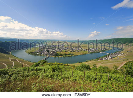 Look at Piesport on the Moselle - Stock Photo