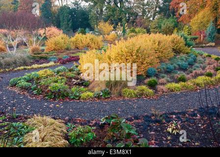 The Winter Garden in autumn. Bressingham Gardens, Norfolk, UK, Design: Adrian Bloom. - Stock Photo