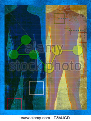 Connected dots over silhouettes of male and female bodies - Stock Photo