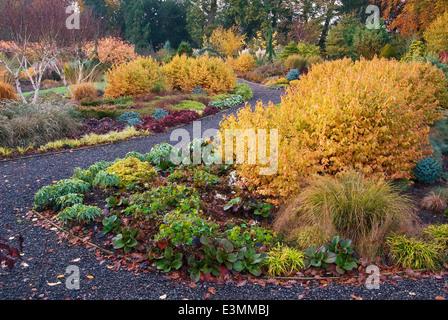 The Winter Garden,in autumn. Bressingham Gardens, Norfolk, UK, Design: Adrian Bloom. - Stock Photo