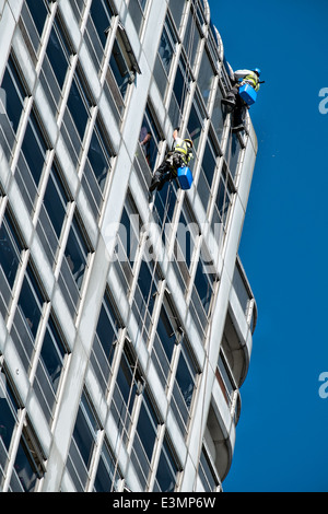 Window cleaners cleanin windows on the David Murry John building and Brunel shopping Center logo, Swindon, Wiltshire, - Stock Photo