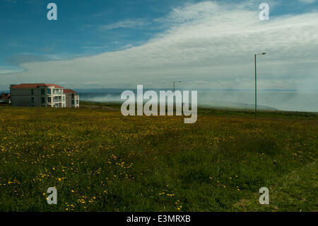 Porthcawl, Wales, UK. 25th June, 2014. Fire fighters tackle huge grass and gorse fire on Locks Common near the Esplanade. - Stock Photo