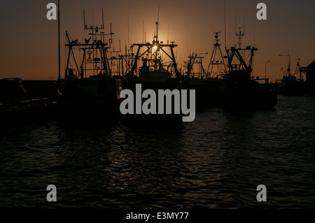 Fishing boats tied up at sunset in Pittenweem harbour Scotland - Stock Photo