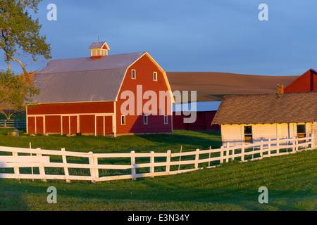 The Palouse, Whitman County, Washington: Red barn and farm scene in evening light - Stock Photo