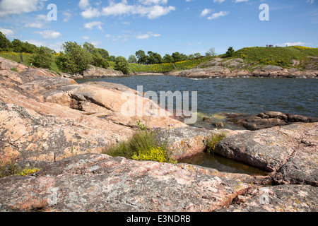 rocks and flowers in the summer on the fortification island Suomenlinna off the coast near helsinki - Stock Photo