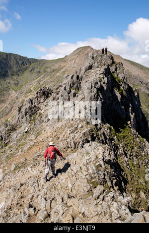 View along Crib Goch ridge top scramble with hikers scrambling over Pinnacles in mountains of Snowdonia North Wales - Stock Photo