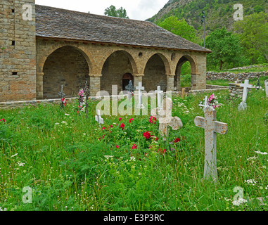 Santa Eulalia d'Erill la Vall, Vall de Boi. Overgrown graveyard full of wildflowers is typical of the churches in - Stock Photo