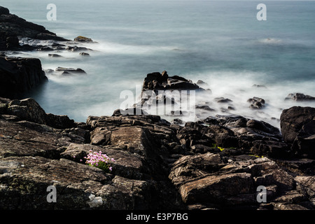 Coast at St. Ives, Cornwall in the UK - Stock Photo