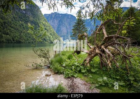 Koenigssee in German state of Bavaria on 01 June 2014 - Stock Photo