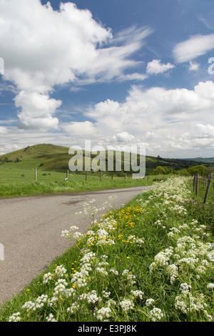 A Shropshire country lane in summer near Church Stretton, Shropshire, England, UK - Stock Photo