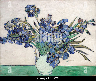 Vincent van Gogh - Irises - 1890 - MET Museum - New-York - Stock Photo