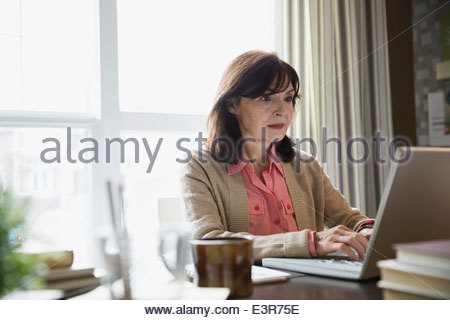 Fabulous Woman Using Computer At Desk In Home Office By Window Side View Largest Home Design Picture Inspirations Pitcheantrous