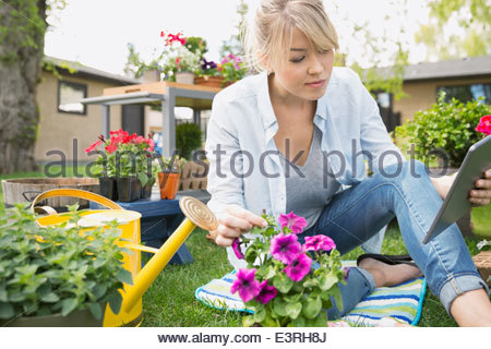 Woman with digital tablet planting flowers in garden - Stock Photo