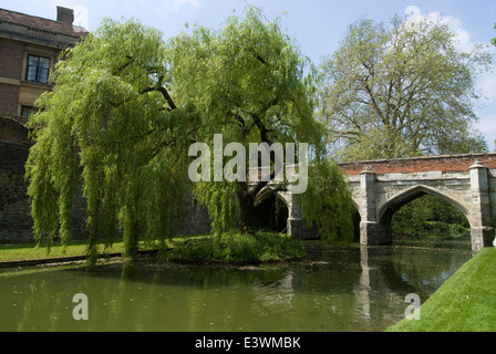 Moat and grounds of Eltham Palace, Eltham, London, England - Stock Photo