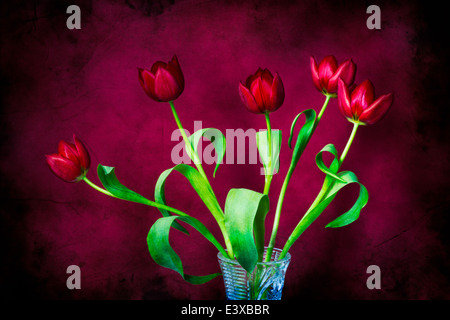 Tulips - Five Reds On Red. A bunch of red tulips in a cut glass vase against the background of red color - Stock Photo