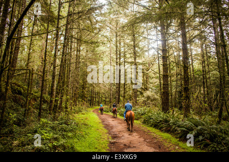 Caucasian ranchers riding horses in forest - Stock Photo