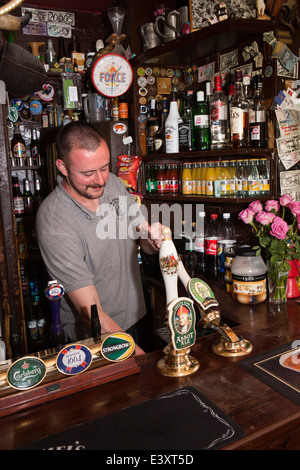 UK England, Suffolk, Bury St Edmunds, pouring pint of IPA in Nutshell, Britain's smallest pub - Stock Photo
