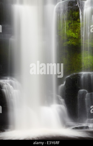 Waterfall in primeval forest, New Zealand - Stock Photo