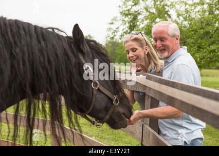 Mature couple hand feeding horse through fence - Stock Photo