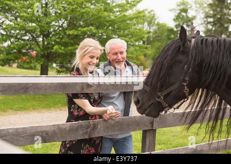 Mature couple feeding horse through fence - Stock Photo