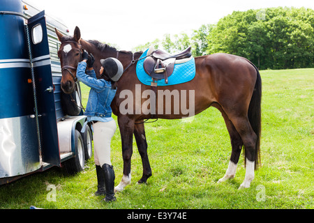 Horse rider putting on horse's bridle - Stock Photo