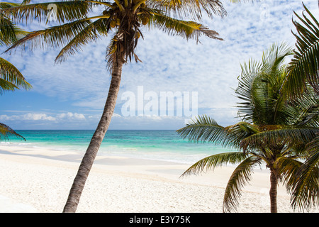 Palms and white sand at the Mayan Riviera beach of Tulum, Mexico. - Stock Photo