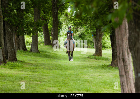 Young woman riding horse through forest - Stock Photo