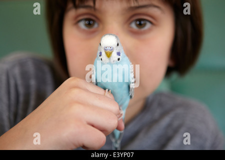 Parakeet bird perched on finger of 10 year old girl. - Stock Photo