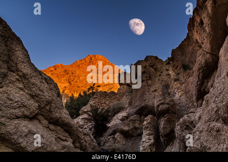 Moon in a mountain oasis - Stock Photo