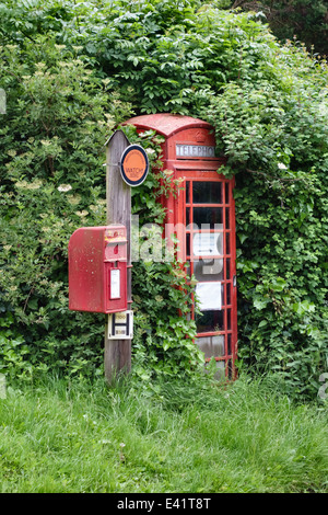 An old red telephone kiosk in Herefordshire, UK, almost lost in the overgrown hedge, with a Royal Mail postbox - Stock Photo