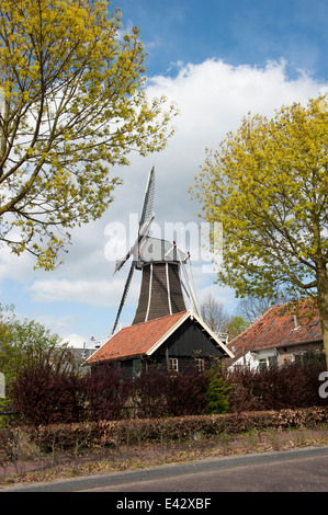 Traditional Dutch wooden windmill in a local farm - Stock Photo