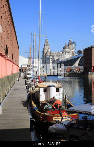 The Albert Docks, in Liverpool, with the Royal Liver Building behind, in summer, on Merseyside, NW England - Stock Photo