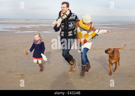 Mid adult parents, daughter and dog running on beach, Bloemendaal aan Zee, Netherlands - Stock Photo