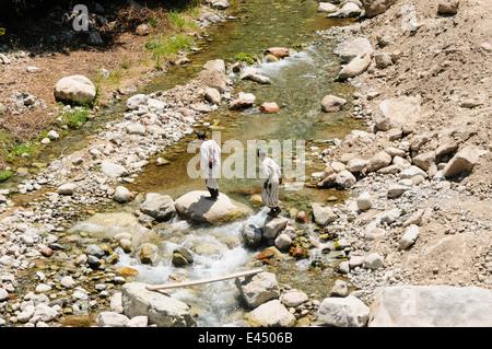 Ourika River, Ourika Valley, Atlas Mountains, Morocco - Stock Photo