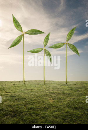 Plants as wind turbines - Stock Photo