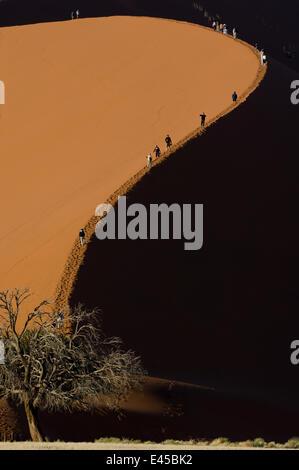 Tourists climbing giant sand dunes (dune 45) at Sossusvlei, Namib Desert, Namibia. July 2008. - Stock Photo