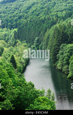 View from the Esch-Sur-Sûre dam of the River Sauer flowing through a forest, Oesling, Ardennes, Luxembourg, May - Stock Photo
