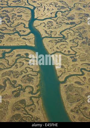 Aerial view of river tributaries, saltmarsh and coast, Punta Umbria, Costa de la Luz, Huelva, Andalucia, Spain, - Stock Photo