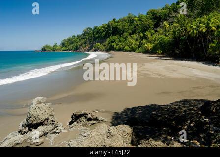 Pacific Ocean beach, Osa Peninsula, Corcovado National Park, Costa Rica, February 2009 - Stock Photo