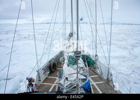 'Golden Fleece' (base ship of the BBC film crew) as it passes through floe ice off the Antarctic Peninsula, Antarctica, - Stock Photo