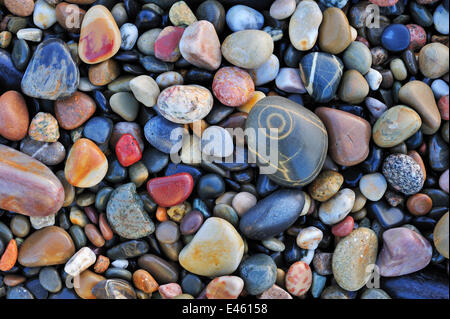 Colourful water-smoothed pebbles on shingle beach. Normandy, France, October 2010. - Stock Photo