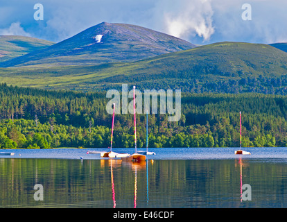 Small boats moored on and reflected in Loch Morlich, sunny summer evening, near Aviemore, Cairngorms National Park, - Stock Photo