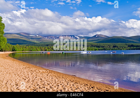 View from the sandy shore on Loch Morlich to Glenmore forest and the Cairngorm plateau, summer evening, by Aviemore, - Stock Photo