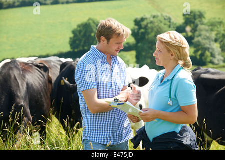 Dairy Farmer Talking To Vet In Field With Cattle In Background - Stock Photo
