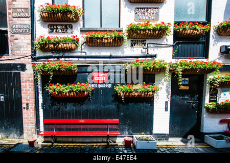 Hanging baskets and red benches outside the Duke of York pub, Belfast - Stock Photo