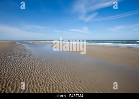 Beach at low tide, Lower Saxon Wadden Sea National Park, Borkum, East Frisian Islands, East Frisia, Lower Saxony, - Stock Photo