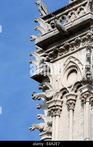 Gargoyles, Notre Dame de Paris cathedral, Paris, France, Europe - Stock Photo