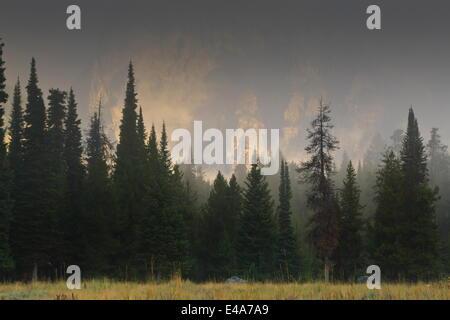 Hazy Teton Range and pine trees near Phelps Lake, Grand Teton National Park, Wyoming, United States of America, - Stock Photo