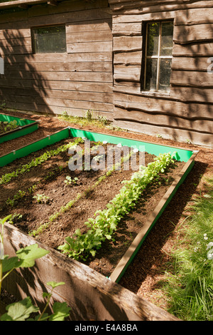 ... Garden With Mixed Vegetable Patch And Slug Fence   Stock Photo